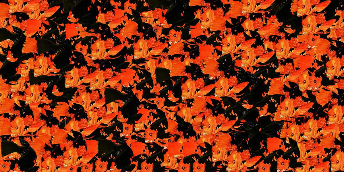 アートパネル 10cm単位でサイズオーダーできる 絵画 壁掛け インテリア 壁飾り キャンバス アート ウォール 金魚 魚 パターン 赤 レッド 黒 ブラック e320904