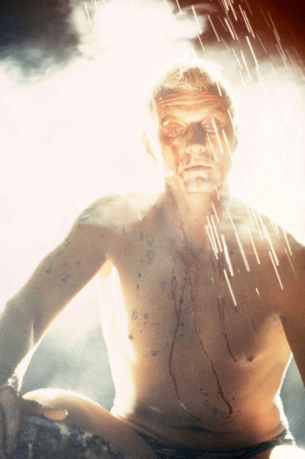 楽天市場 ブレードランナー 映画 Sfの壁紙 輸入 カスタム壁紙 Photowall Blade Runner Rutger Hauer 貼ってはがせるフリース壁紙 不織布 海外取り寄せのため1カ月程度でお届け 代引き不可 壁紙屋本舗 カベガミヤホンポ
