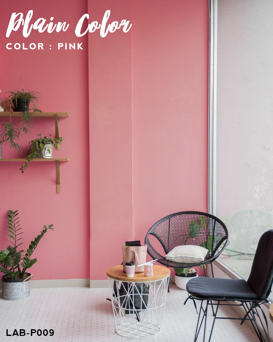 楽天市場 壁紙 シール 貼ってはがせる壁紙 無地 ピンク W 42cm H