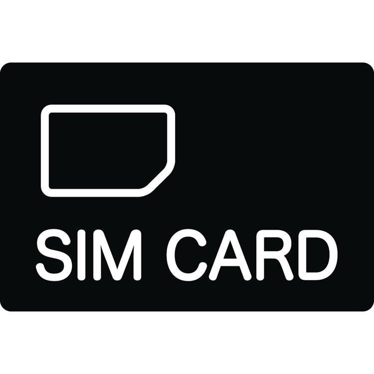グローバル対応SIMカード(1GB) GS-1 送料無料 シムカード グローバル 海外 1GB キングジム 【D】【B】