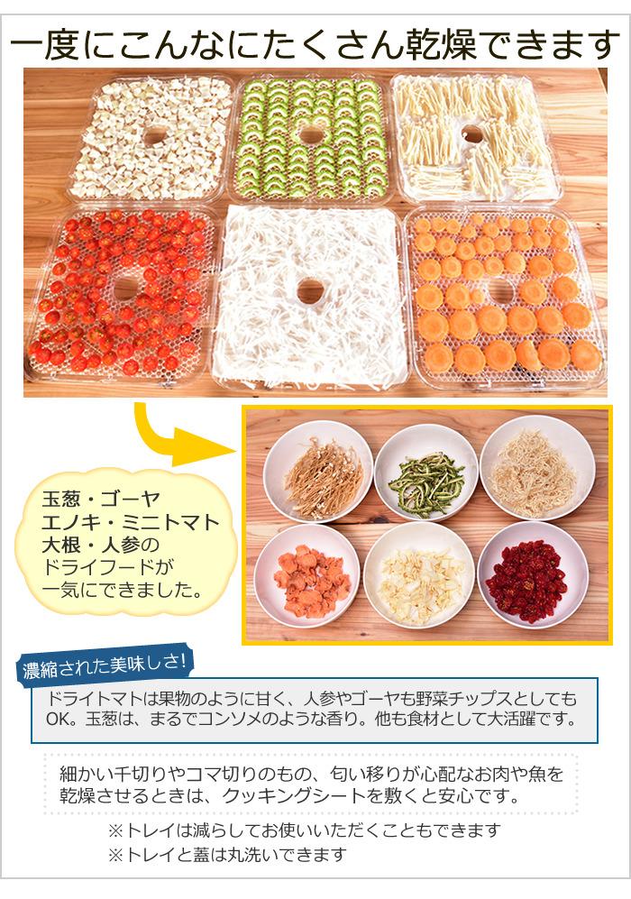 Image result for プリンセス フードドライヤー
