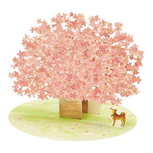 Kaderia rakuten global market dog spring sanrio sanrio card dog spring sanrio sanrio card greeting card sakura who looks up at the razor cut popup card cherry tree m4hsunfo
