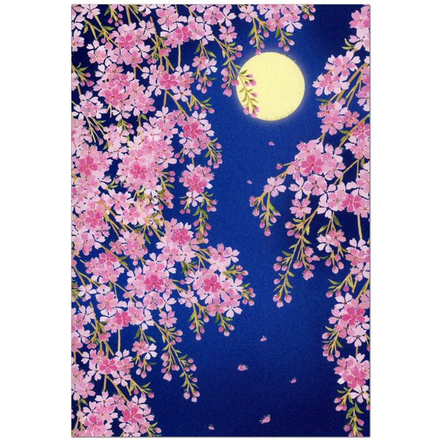A Multipurpose Credit Card Going To See Cherry Blossoms At Night Month And Cherry Tree Sanrio Sanrio Card Greeting Card Cherry Tree Lam