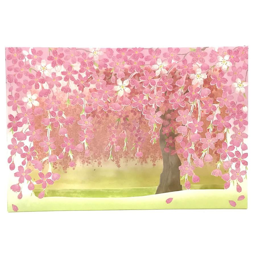 Kaderia Sanrio Sanrio Greeting Card Cherry Tree Cherry Tree In