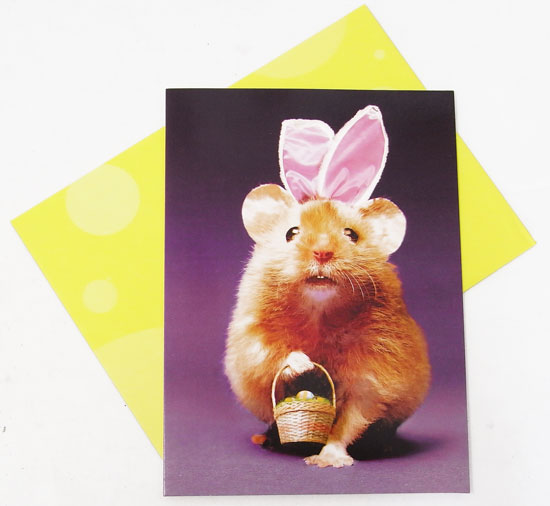 Kaderia rakuten global market easter card l bunny hamster the cute expression that i laugh at the design seems to be the united states too a message card of avanti bunny hamster negle Choice Image