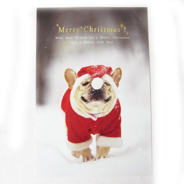 KADERIA | Rakuten Global Market: Christmas card ☆ Natsuhiko ...