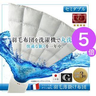 ■5倍ポイント■洗濯機で洗える エクセルゴールドラベル フランス産ダウン90% 羽毛薄掛け布団 Wash ウォッシュ セミダブル[00]