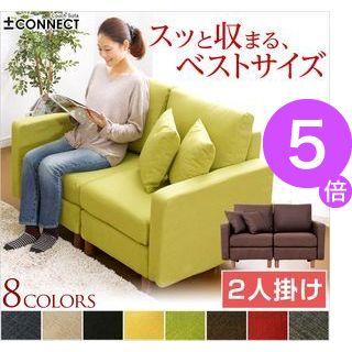 ■5倍ポイント■カスタマイズソファ【-Connect-コネクト】(2人掛けタイプ)【代引不可】[CK] [03]