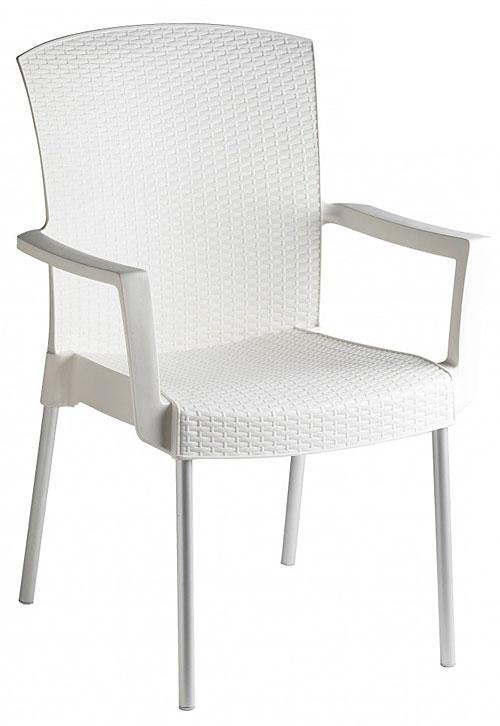 ガーデン チェアー(椅子 イス):gTrs-ac0S3wh