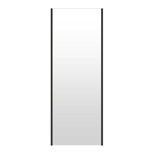 割れない鏡 割れないミラー リフェクス リフェクスミラー フィルムミラー 鏡 ミラー 立て掛け鏡 立てかけ 立て掛け 姿見 姿見鏡 全身 全身鏡 軽量姿見 防災ミラー (特注サイズ): RjM-52/60x160t-b20 割れない鏡 割れないミラー リフェクス ミラー