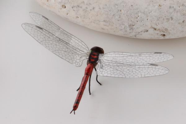Splashing insect model akatombo (approximately) 7 × body 4.5 x 1.5 cm