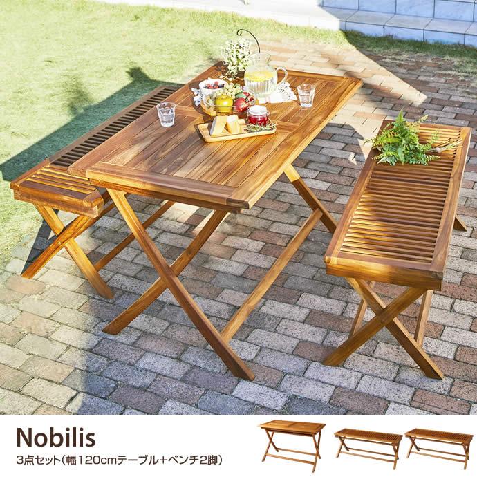 【3点セット】ガーデンセット テーブル ベンチ ガーデンファニチャー コンパクト120 チーク 折りたたみ式