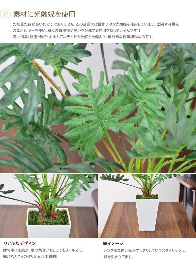 植物光催化剂人工翠鸟绿色人工植物消臭抗菌抗菌甲醛植物人工烟草宠物艺术 %现代简单北欧