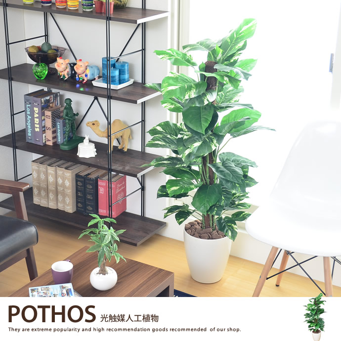 Artificial Plants Housewarming Grand Opening Celebrations And Anniversary For Gifts Ideal Accent Office Entrance Hallway Or