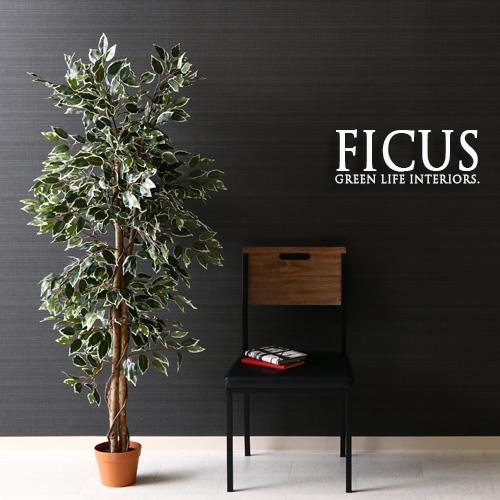 観葉植物 フェイク FICUS フィカス ゴムの木 160cm 大型 造花 インテリア 植物 フェイクグリーン 人工観葉植物 イミテーション リアル 大きめ 大きい 本物そっくり おすすめ おしゃれ かわいい プレゼント 送料無料