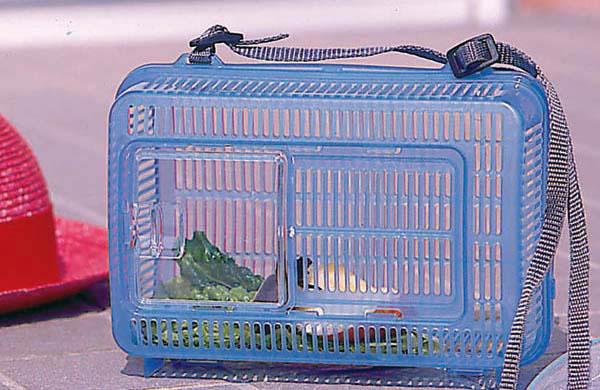 虫かご角型 KQ-210 クリアブルー・クリアグリーン 昆虫 ペット用品 ペットと暮らす 飼育 生活用品 アイリスオーヤマ 新生活