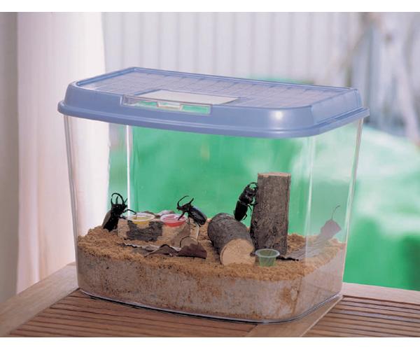 飼育ランド CY-LL パールブルー・ブラック 昆虫 ペット用品 ペットと暮らす 飼育 生活用品 アイリスオーヤマ 新生活