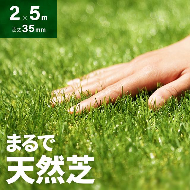 芝生マット リアル ガーデニング ガーデン 人工芝 ロール ロールタイプ 2m×5m ベランダ テラス バルコニー リアル人工芝 人工芝生 芝マット 人工芝ロール 芝生 庭 屋上緑化 u字ピン 水はけ
