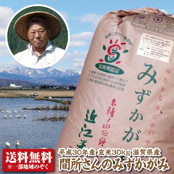 【30年産新米】【送料無料】滋賀県産間所さんのみずかがみ玄米30kg【THE GRAND認定米】【特別栽培米】