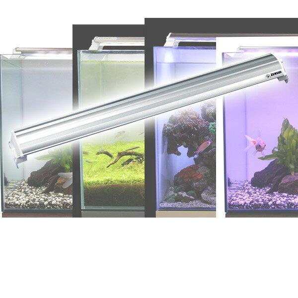 ゼンスイ LEDランプ 60cm 水槽用 照明 ライト 水槽用照明 LEDライト 鑑賞魚 熱帯魚 アクアリウム アクセサリー 【送料無料】