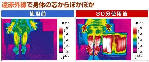 アサヒ(ASAHI) 脚温器 ぽかぽか足湯 デラックス AY-2022N フットヒーター フットバス あんか 足温器