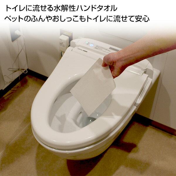 日本製紙クレシア クリネックス 水解性ハンドタオル 水に流せる200枚×35パック 36400*35 ペーパータオル 手拭き てふき ティッシュペーパー トイレ キッチン 衛生