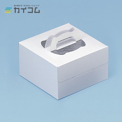 ハンドパッケージ(PFトレー付)フレッシュホワイト5号サイズ : 190×190×112mm入数 : 100単価 : 109.1円(税抜)
