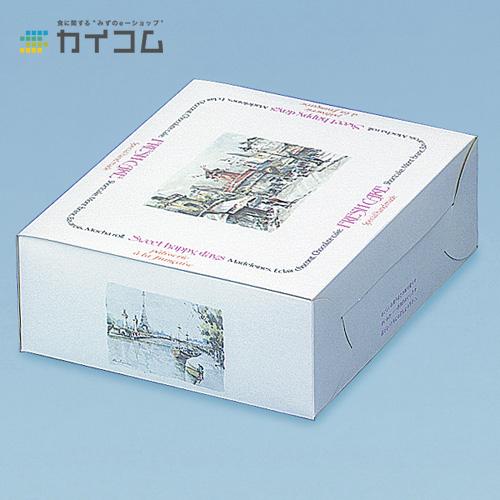 洋生サービス箱No.9(ジュンパリ)サイズ : 270×210×85mm入数 : 200単価 : 58.67円(税抜)