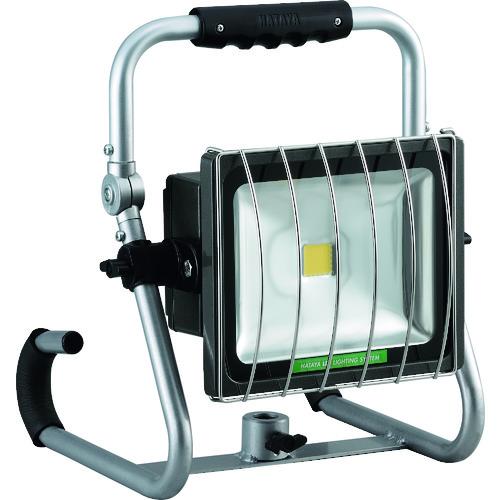 ハタヤ LEDジューデンフックライト LEH-30BL 【DIY 工具 TRUSCO トラスコ 】【おしゃれ おすすめ】[CB99]