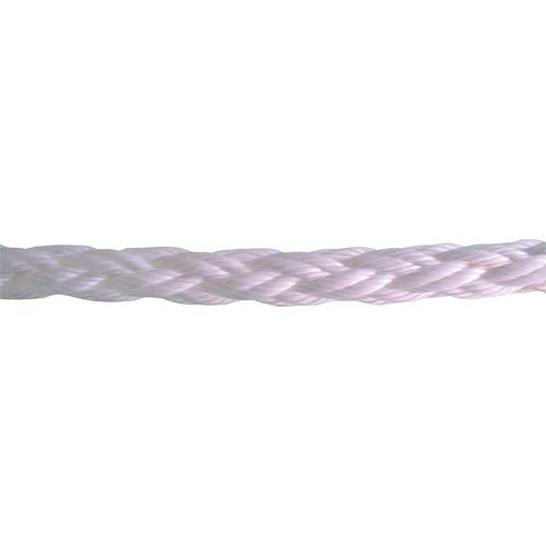 (株)テザック TESAC ダイナミクスSL12ロープ D-SL-12-12MM 【DIY 工具 TRUSCO トラスコ 】【おしゃれ おすすめ】[CB99]