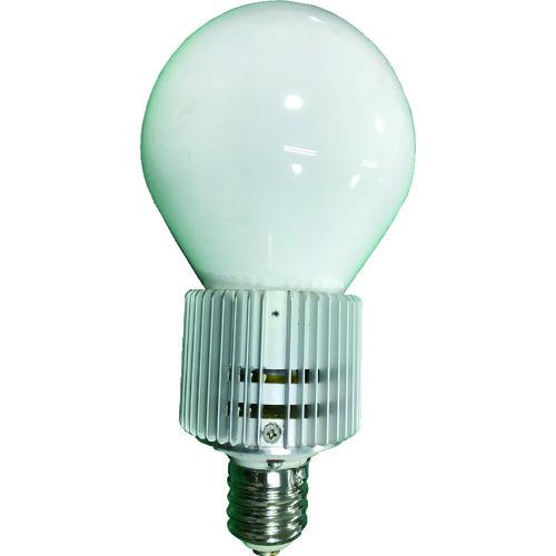 天草池田電機(株) ELI Lamp BU-120W-E39-N-WT 屋外用 003368 【DIY 工具 TRUSCO トラスコ 】【おしゃれ おすすめ】[CB99]