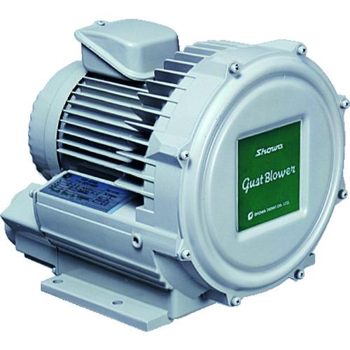 昭和 電動送風機 渦流式高圧シリーズ ガストブロアシリーズ(0.3kW) U2V-30S 【DIY 工具 TRUSCO トラスコ 】【おしゃれ おすすめ】[CB99]