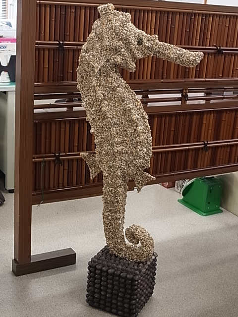 シードラゴン-ナサシェル-(約125cm/1個/現品)貝 シェル 置物 フォト マリン インテリア 貝殻 ブライダル ディスプレイ