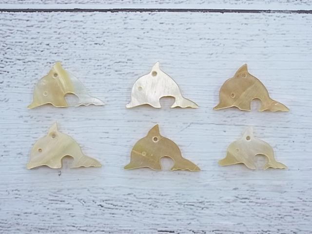 貝殻とヒトデの専門店です ■メール便可■イルカ-51- シロチョウガイ 約2.0~2.3cm 大幅値下げランキング 6枚 貝 シェルパーツ 10%OFF アクセサリー ネックレス ストラップ ハンドメイド イヤリング ペンダント