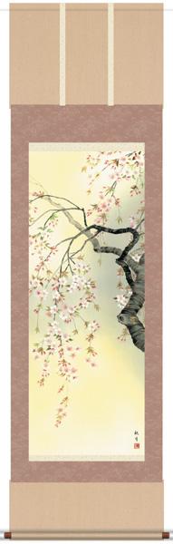 掛け軸 掛軸 花鳥画 森山観月・桜花爛漫/尺五/花鳥画/床の間