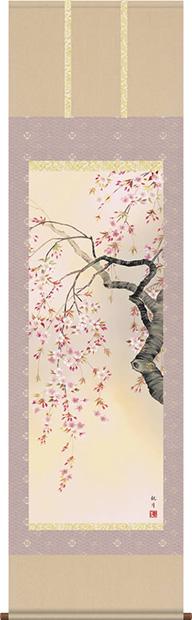 掛け軸 掛軸 花鳥画 森山観月・桜花爛漫 尺五 床の間
