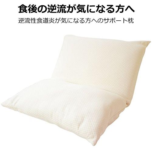逆流性食道炎が気になる方へ! スロープピロー (カバー付) Slope Pillow 高機能 安眠 枕 適度な傾斜で、快適寝姿勢をサポート 緑内障を招く一因の夜間高眼圧を退ける