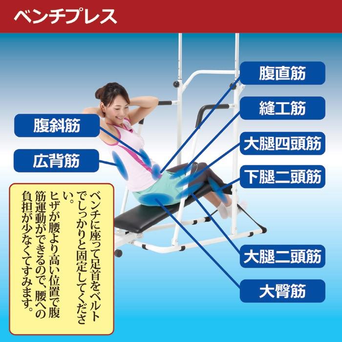 ぶら下がり健康器具 ぶら下がり君 極 きわみ  腹筋台 ベンチシート付き 高さ調節(8段階 5.5cm刻み) ぶら下がりくん ぶら下がり健康器