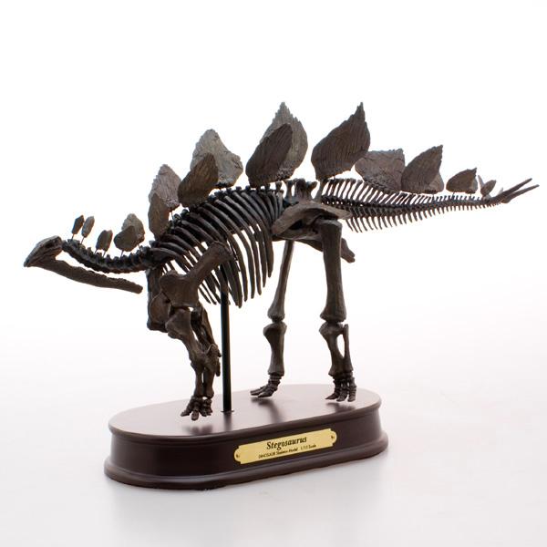 ステゴサウルス スケルトンモデルFDS604/BR ブラウン 1/15 フェバリットラッピング 熨斗 ジェラシックワールド