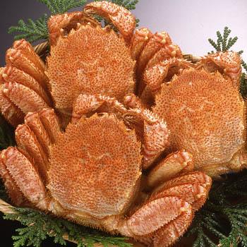 【在庫あります】北海道産 毛蟹350g前後ボイル急速冷凍 北海道 うにの匠 渡邊