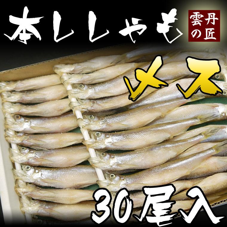 北海道産の本ししゃも 卵がプリップリの子持ちししゃも 添加物を使わず うす塩だけで仕上げました メス本物 格安 価格でご提供いたします 北海道産 日本最大級の品揃え ししゃも 極上子持ちししゃもお買い得30尾入り