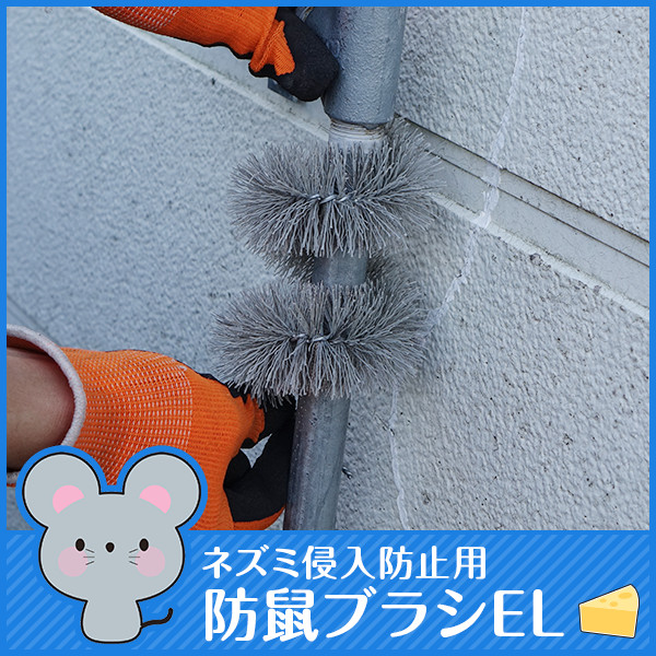 ネズミ侵入防止用 防鼠ブラシEL×100本 配管 ダクト 壁 隙間対策用