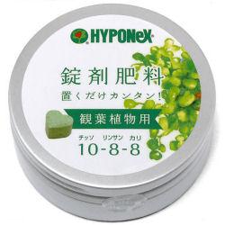 ハイポネックス 錠剤肥料観葉植物用 約70錠×40缶/ケース 【ガーデニング・園芸・肥料】【送料無料】