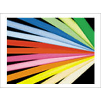 ルミネカラー リアルイエロー[LC-413] 蛍光ランプ用フィルター25本【※代引き・返品・同梱不可】【送料無料】