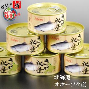 北海道枝幸産獲れたてフレッシュパック内容量170g賞味期限2023.7月以降 さけ水煮缶詰 全国どこでも送料無料 6缶セット からふとます 期間限定今なら送料無料