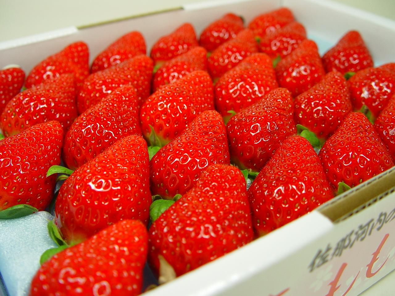 徳島県佐那河内村産 さくらももいちご 28粒入り 市場へ出荷されて間もない苺の新品種!甘さ抜群でとっても食味が良いイチゴの逸品! 発送予定:1月上旬