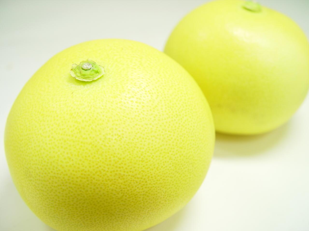 高知でしか栽培されていない文旦の名品!文旦の中で最も上品な味と評価される水晶文旦!お歳暮ギフトにおすすめ 高知県産 水晶文旦 2個入り  園芸王国・高知で栽培された柑橘の名品!その爽やかな甘味と上品な味わいから「柑橘の女王」の呼ばれる文旦の最高級品種  お歳暮ギフトにおすすめ ハロウィン 出荷予定:10月上旬~