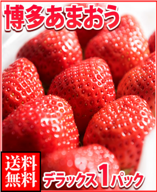 イチゴのおいしい季節になりました~、甘いイチゴのお取り寄せを教えてください!