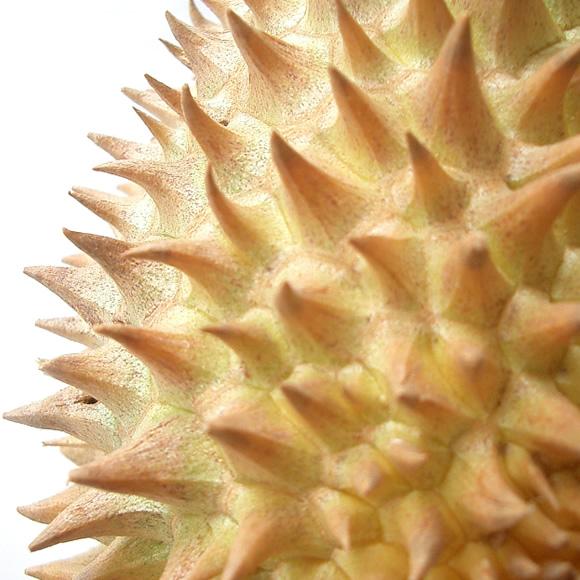 フルーツの王様タイ産ドリアン1玉