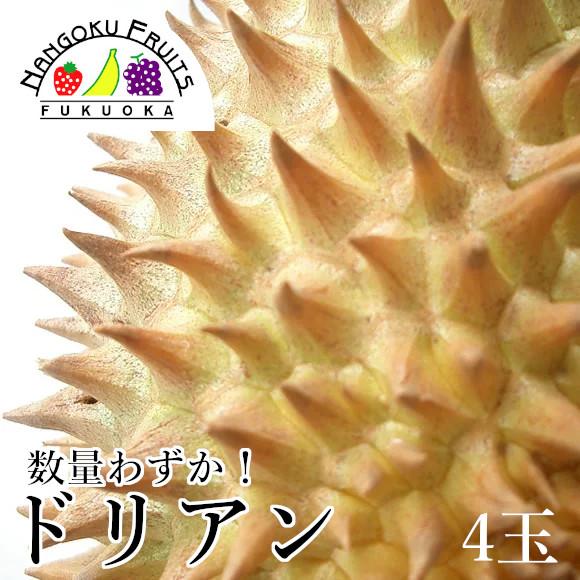 【数量限定】タイ産 ドリアン4玉